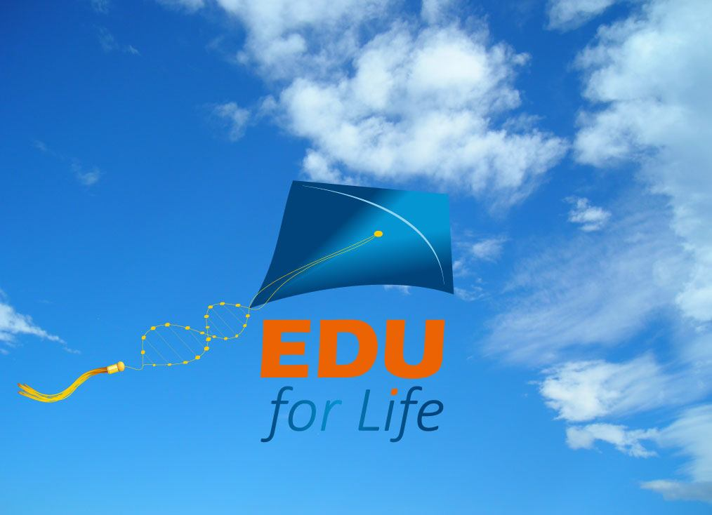 Outline-work-EduForLife-01