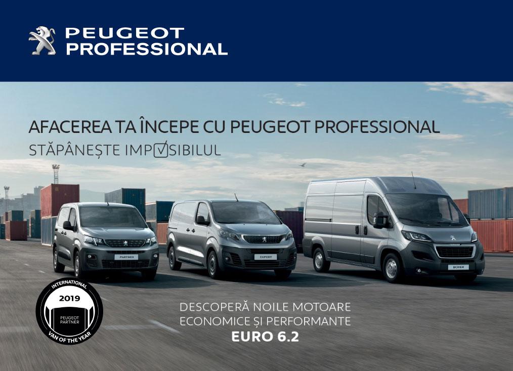 Peugeot-Outline13